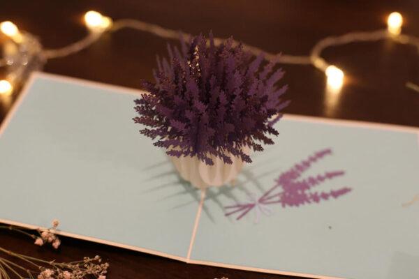 Lavande-carte Pop Up 3D «PROVENCE» avec InsertNote chez cartepopup.com