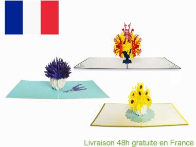 Collection Les plus Belles Fleurs d'Été-carte Pop Up 3D chez cartepopup.com